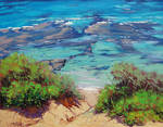 Shallow Coastline