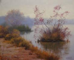 Misty Hawksbury River by artsaus