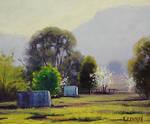 Hartley Spring