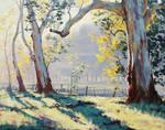 Australian Gum Trees Painting