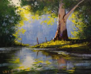 River Eucalyptus Tree by artsaus