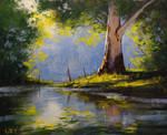 River Eucalyptus Tree