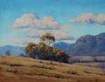 Australian Landscape grazing sheep