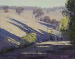 Australian Summer Painting