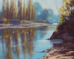 Morning Tumut River