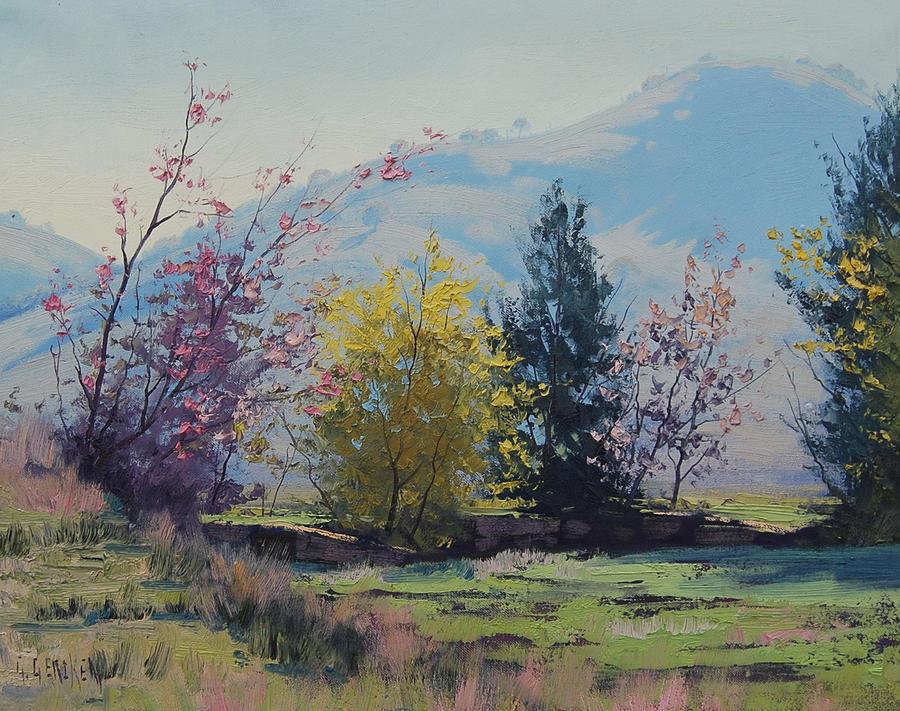 Tumut Spring by artsaus