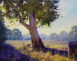 Australian Landscape by artsaus