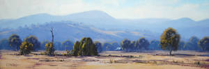 Tumut Valley Landscape