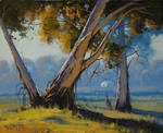 Kangaroo in the Australian Landscape