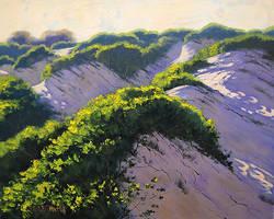 Light Across the Dunes
