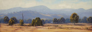 Tumut Landscape