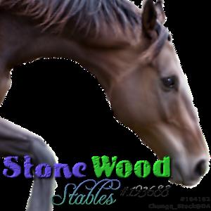 StoneWoodStables by CloverHoofAcres