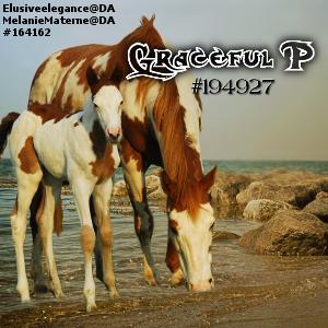 Graceful P Avatar by CloverHoofAcres
