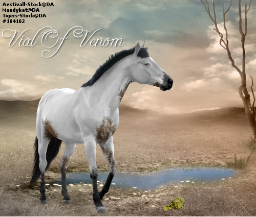 Vial Of Venom - Horse Art by CloverHoofAcres
