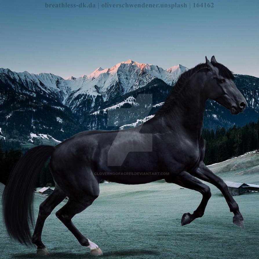 Black Mountain by CloverHoofAcres