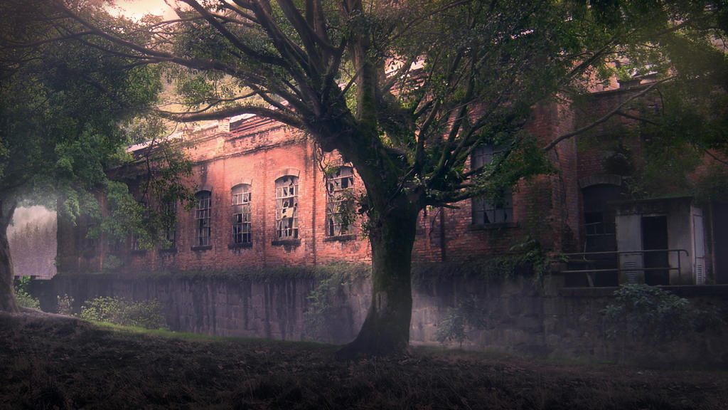 Abandoned Asylum by Rafaelbfalconi