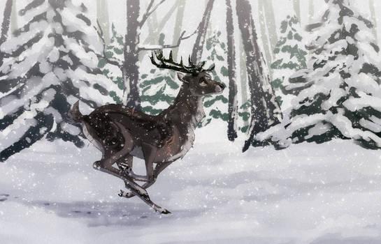 Prancing thru the snow