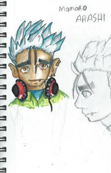 Character Mamoru Arashi