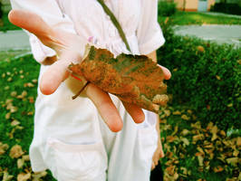 na spacerze w jesienny dzien. by AppleLady