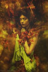 Gardenia by paweladamiec