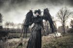 The Crow by paweladamiec