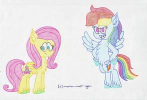 Rainbow Dash and Fluttershy by momo-malt-gern