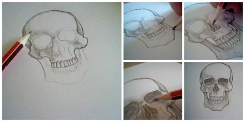 WIP skull by shanndalf