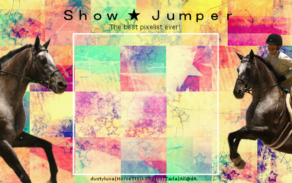 Show Jumper Layout by DustiiiBunniii