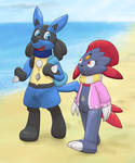 Poke-Pooltoys at the Beach