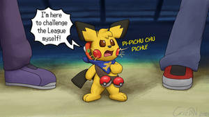 Pint-Sized Pokemon Trainer