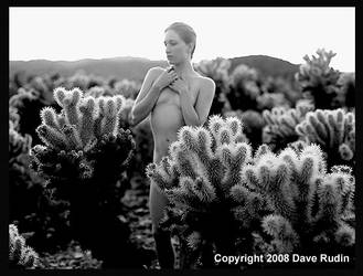 Nude, California, 2008 by DaveR99