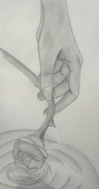 Hand holding rose by xshillyx on deviantart for Hand holding a rose drawing