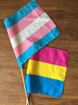 Houston Pride 2018 (8/10) Trans and Pan Flag