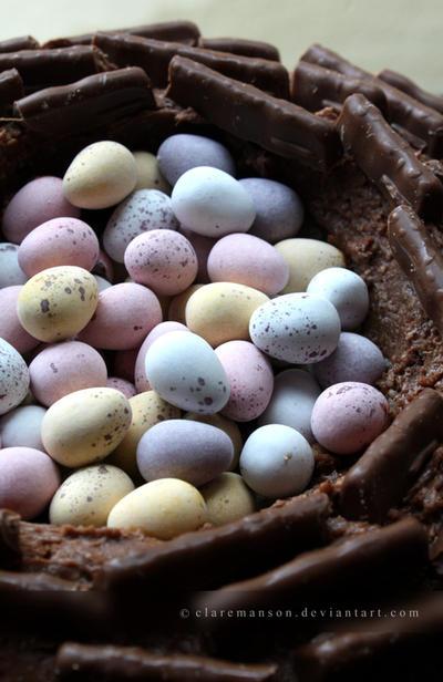 Easter Egg Nest Cake by claremanson