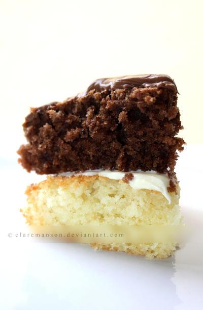 Gluten Free Sponge Cake by claremanson