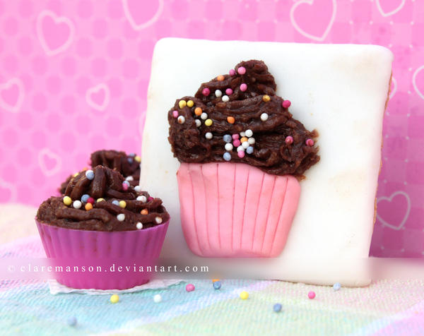 Cupcake Canvas by claremanson