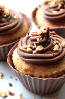 Peanut Butter Cupcakes in Edible Chocolate Cases by claremanson