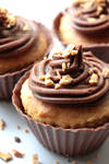 Peanut Butter Cupcakes in Edible Chocolate Cases