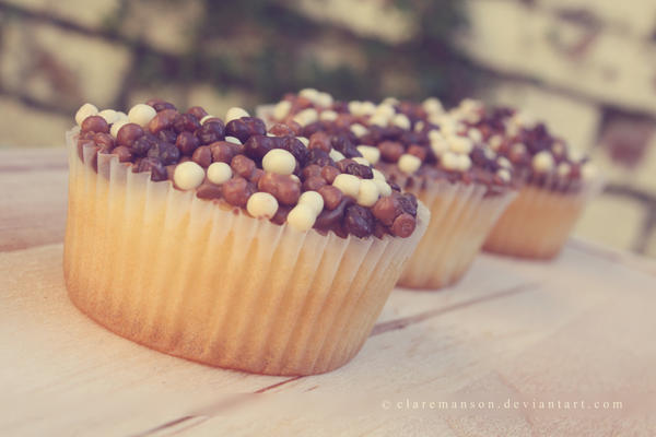 Chocolate Sprinkle Cupcakes by claremanson