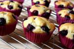 Blueberry Muffins (+recipe)
