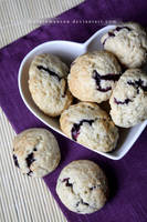 Blueberry Drop Cookies by claremanson