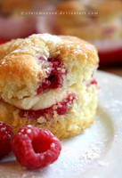 Raspberry Cupcakes (+recipe) by claremanson