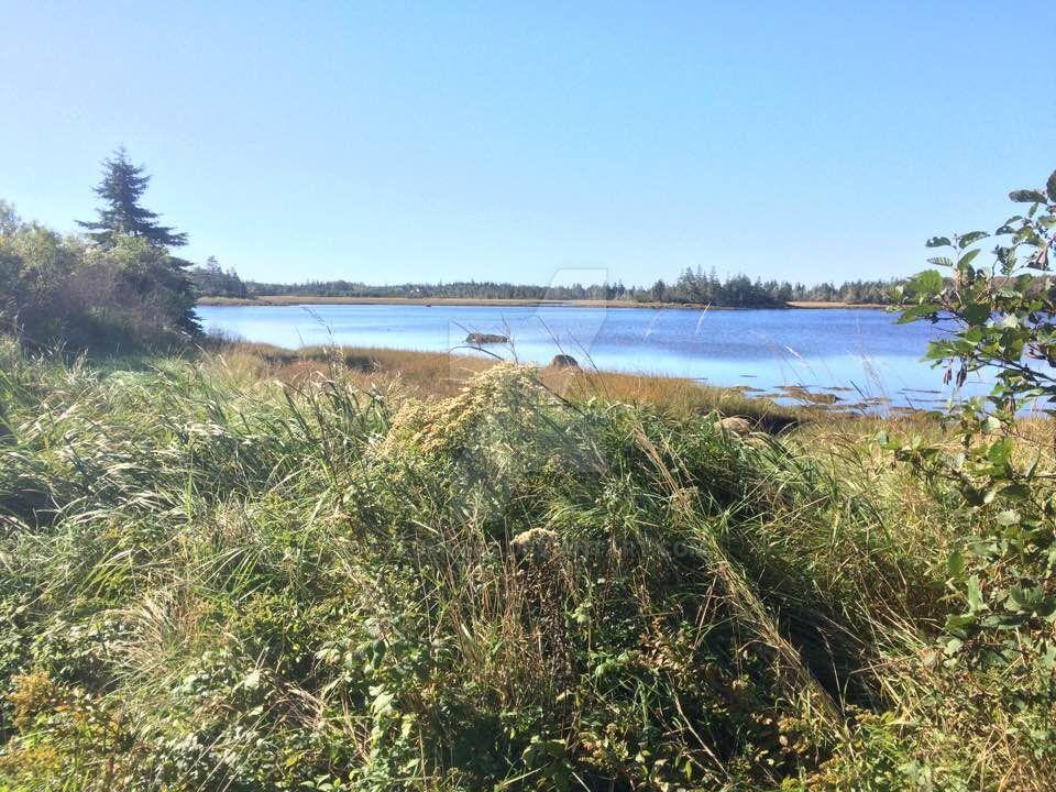 Shoreline by LtFumbles