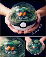 Charmander the stray Poke'mon -Poke Ball Terrarium by TheVintageRealm