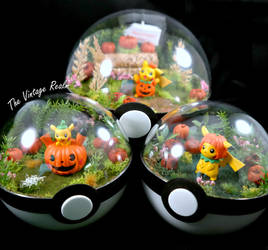 Poke Ball Terrarium Close Up - Pumkin Patch! by TheVintageRealm