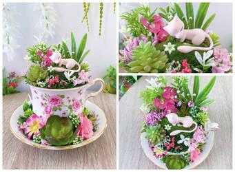 Mew Tea Cup Terrarium