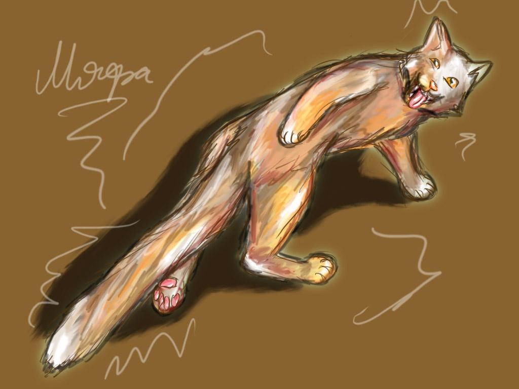 http://fc00.deviantart.com/fs42/f/2009/123/1/d/Crazy_crazy_cat_by_UndeadMonster.jpg