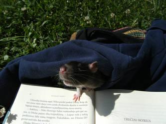 ratty by krabatas