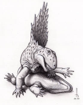 Dimetrodon teutonis