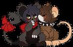 gay mice